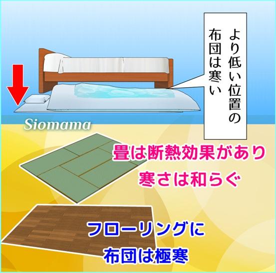 畳は断熱効果があるので思ったより寒くないと説明している